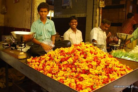 mysore-stolica-jogi-24.jpg